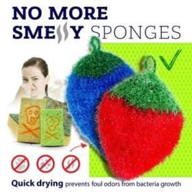 No More Smelly Sponges fruit