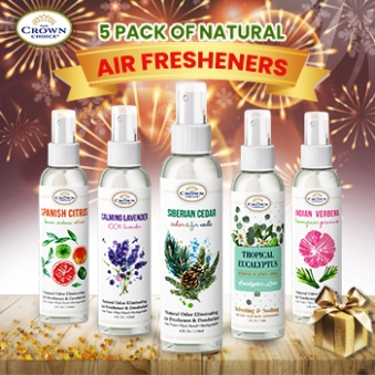 natural air freshener new year