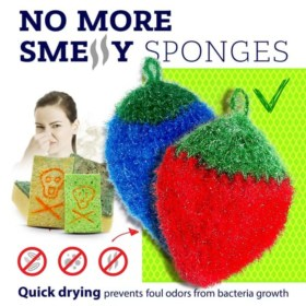 dish scrubbie no more smelly sponges