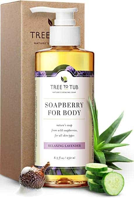 soapberry for body